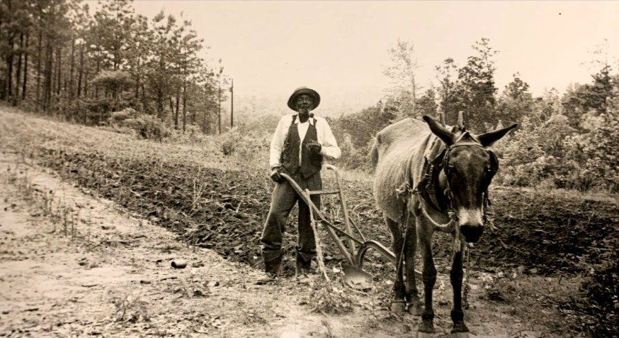 "A sharecropper in Alabama's Black Belt. The documentary ""Alabama Black Belt Blues"" places the music in its cultural context. (contributed)"
